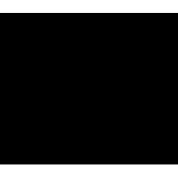 Štětec - čínská malba skosený